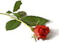 liggande-ros